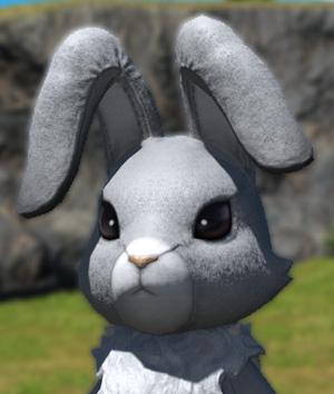 FF14 2020 エッグハント ラビットヘッド ウサギの着ぐるみ