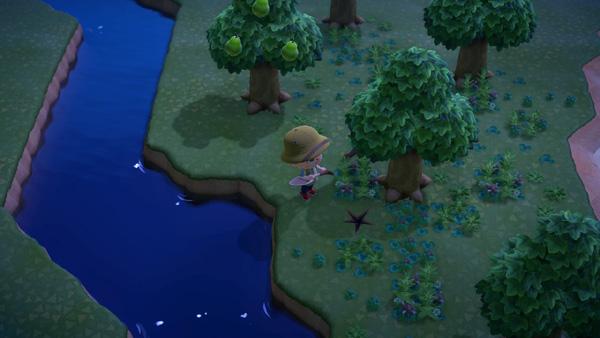 あつまれどうぶつの森 あつ森 化石 かせき