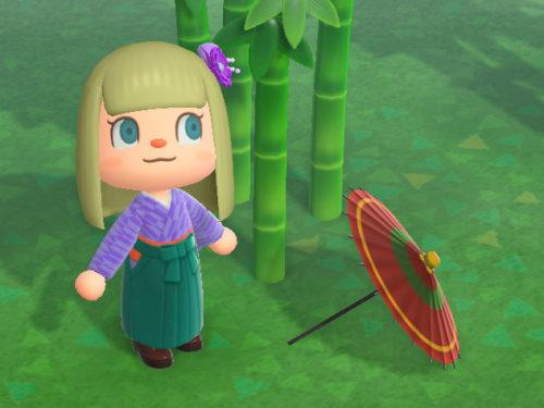 あつまれどうぶつの森 あつ森 ばんがさ 番傘