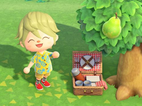 あつまれどうぶつの森 あつ森 ピクニックバスケット レッド 赤