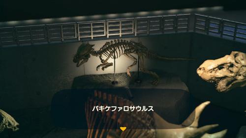 あつまれどうぶつの森 あつ森 パキケファロサウルス