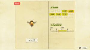 あつまれどうぶつの森 あつ森 ミツバチ