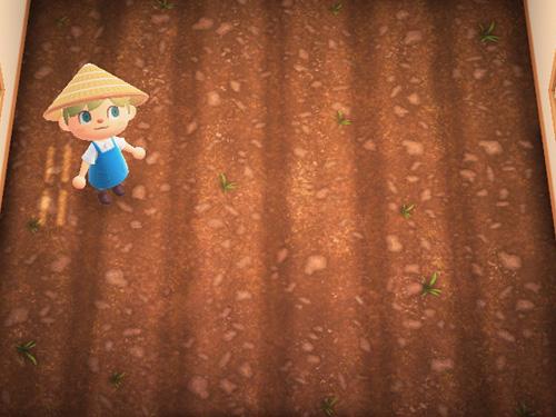 あつまれどうぶつの森 あつ森 はたけのゆか 畑の床 ローラン