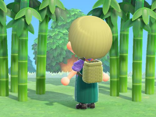 あつまれどうぶつの森 あつ森 しょいこ 竹