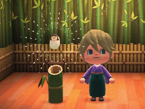 あつまれどうぶつの森 あつ森 たけのビックリばこ 竹のビックリ箱 家具 かぐや姫