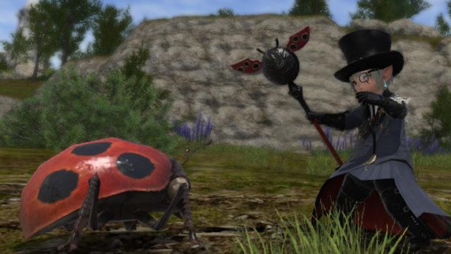 FF14 ミラプリ ララフェル オーラムレギス・ロングポール てんとう虫 テントウムシ 黒魔道士